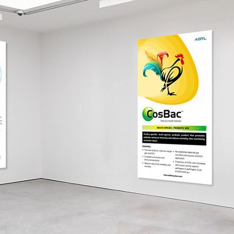 Pune Exhibition Stall Design